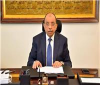 وزير التنمية المحلية يتأكد من إغلاق الحدائقفي جميع المحافظات