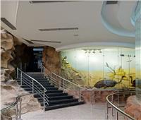 «السياحة» تطلق زيارة افتراضية للمتحف الحيواني بالجيزة