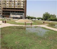 محافظ سوهاج: غلق الحدائق والمتنزهات العامة غلقا كاملا