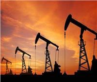خبير اقتصادي: مصر أمام فرصة ذهبية لإبرام عقود طويلة الآجل لشراء البترول