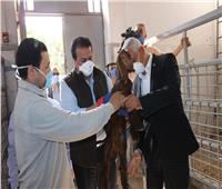 «عبد الغفار» يوجه بالاعتماد على التكنولوجيا لتطوير مزارع الإنتاج الزراعي والحيواني