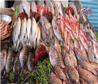 أسعار الأسماك في سوق العبور السبت 25 ابريل