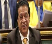 برلماني: المصريون لن ينسوا أبدا ذكرى تحرير سيناء الغالية 