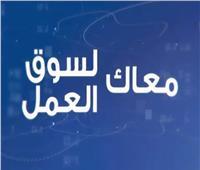 الفنون التطبيقية بجامعة حلوان تنظم ندوة «أون لاين» بعنوان «بتطوير العمل.. ينبع الأمل »