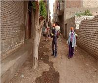 عزل قرية نهطاي بالغربية بعد إصابة ١٤ حالة بفيروس كورونا
