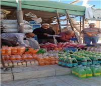 حملة تفتيش لمراقبة الأغذية والمشروبات بمدن سيناء
