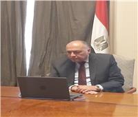 وزير الخارجية: موقف مصر راسخ من القضية الفلسطينية