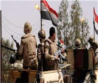 الاتحاد العام للمصريين بالخارج يدين الهجوم الإرهابي في بئر العبد