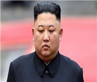 «إعلان محتمل نهاية الأسبوع».. نائب كوري منشق يؤكد وفاة زعيم كوريا الشمالية