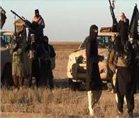 """""""داعش """" يقدم على إضرام النار في مساحات شاسعة من الأراضي الزراعية في """"ديالي"""""""