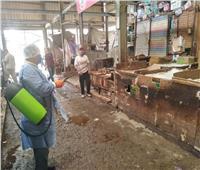 صور| تطهير سوق البطران فى الهرم