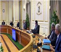 رئيس الوزراء يتخذ قراراً جديداً بشأن مواصفات الكمامة المعتمدة