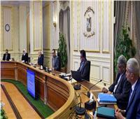 """رئيس الوزراء: تكليف بسرعة الانتهاء من إعداد خطة التعايش مع فيروس """"كورونا"""""""