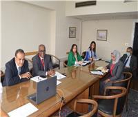 القضايا الإقليمية على مائدة مشاورات بين مصر وإسبانيا