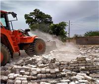 حملة مكبرة لإزالة التعديات على الأراضي الزراعية بالقليوبية