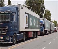 توزيع 12 ألف كرتونة مواد غذائية على المستحقين بالأقصر