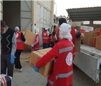 مستلزمات طبية وأدوية ومطهرات مقدمة من الهلال الأحمر المصري لسيناء