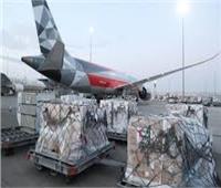 الإمارات ترسل مساعدات طبية إلى جامبيا لمكافحة تفشي فيروس كورونا