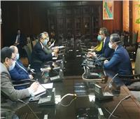 شاكر: استمرار تطوير شبكات توزيع الكهرباء فى قطاع جنوب سيناء