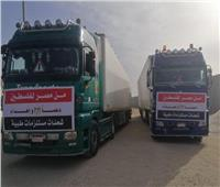 قافلة مساعدات طبية من الهلال الأحمر المصريإلى فلسطين