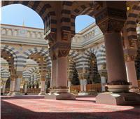 صور| ترجمة التعليمات الاحترازية لفتح المساجد في المدينة المنورة إلى ثماني لغات عالمية
