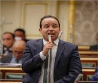 فيديو  برلماني يوجه رسالة لجيش مصر الأبيض