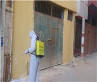 بالصور .. إستمرار أعمال رش وتطهير الشوارع والمنشآت بمدن ومراكز البحيرة