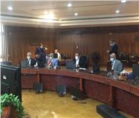 """""""افتراضي جامعة طنطا"""" يناقش الآثار الناتجة عن أزمة كورونا"""