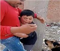 تفاصيل القبض على المتهمين بترويع طفل معاق باستخدام كلب القليوبية