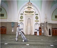 صور| 4077 مسجداً في السعودية استعدت لاستقبال المصلين بعد انقطاع 74 يوماً