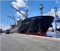 وصول 90 ألف طن قمح وأخشاب وبترول لميناء الإسكندرية