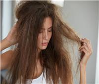 لجمالك| وصفة الزبدة والزيوت لتنعيم الشعر الجاف والمجعد