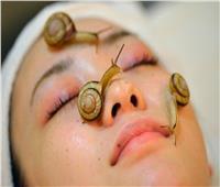 بعد تداوله على الـ«فيسبوك».. طبيب يُحذر من استخدام «الحلزون» للبشرة