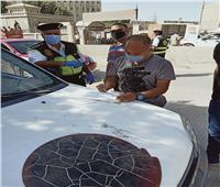 ضبط 43 سائق بمدينة الزقازيق لعدم ارتداء الكمامات