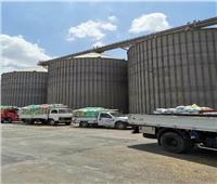 توريد652 ألف طن من القمح لشون وصوامع محافظة الشرقية