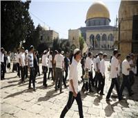 عشرات المستوطنين يقتحمون باحات الأقصى بحماية من شرطة الاحتلال الإسرائيلي
