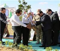 6 أعوام على حكم الرئيس.. كيف حقق السيسي طفرة غير مسبوقة في الزراعة واستصلاح الأراضي؟
