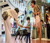 على هيئة كلب.. روبوت يعقم اليدين في المراكز التجارية
