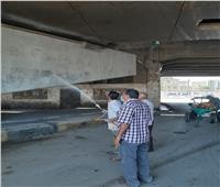 محافظ القليوبية يتفقد أعمال النظافة والصيانة أسفل كوبري قليوب