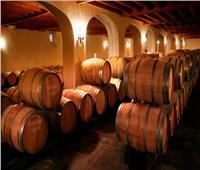 لمحاربة «كورونا».. تحويل النبيذ في فرنسا إلى معقم لليدين