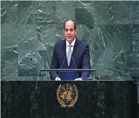 6 أعوام من حكم السيسي| «رئاسة الاتحاد الأفريقي» و«قمم الأمم المتحدة» أبرز المحطات الخارجية