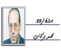 مصر .. والمبادرة الليبية !!