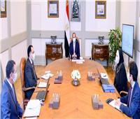 الرئيس يستعرض أهم مشاريع «التجارة والصناعة» مع «مدبولي» والوزيرة نيفين جامع