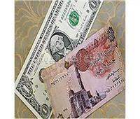 عاجل| سعر الدولار أمام الجنيه المصري في 3 بنوك اليوم 11 يونيو