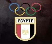 «الأولمبية» تعتمد تصنيف الملاكمة والطائرة والكاراتية