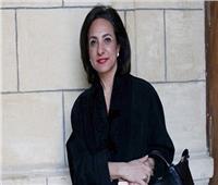 عضو لجنة العلاقات الخارجية بالبرلمان: مصر مهتمة بتنمية كل دول القارة