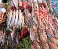أسعار الأسماك في سوق العبور اليوم ١٤ يونيو