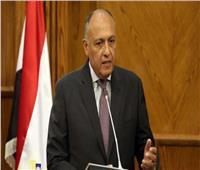 شكري: التعنت الإثيوبي سيضطر مصر للجوء إلى خيارات أخرى