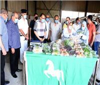 توزيع ٢٥٠ عبوة غذائية على أسر العمالة غير المنتظمة بالشرقية