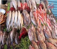 استقرار أسعار الأسماك في سوق العبور اليوم 19 يونيو